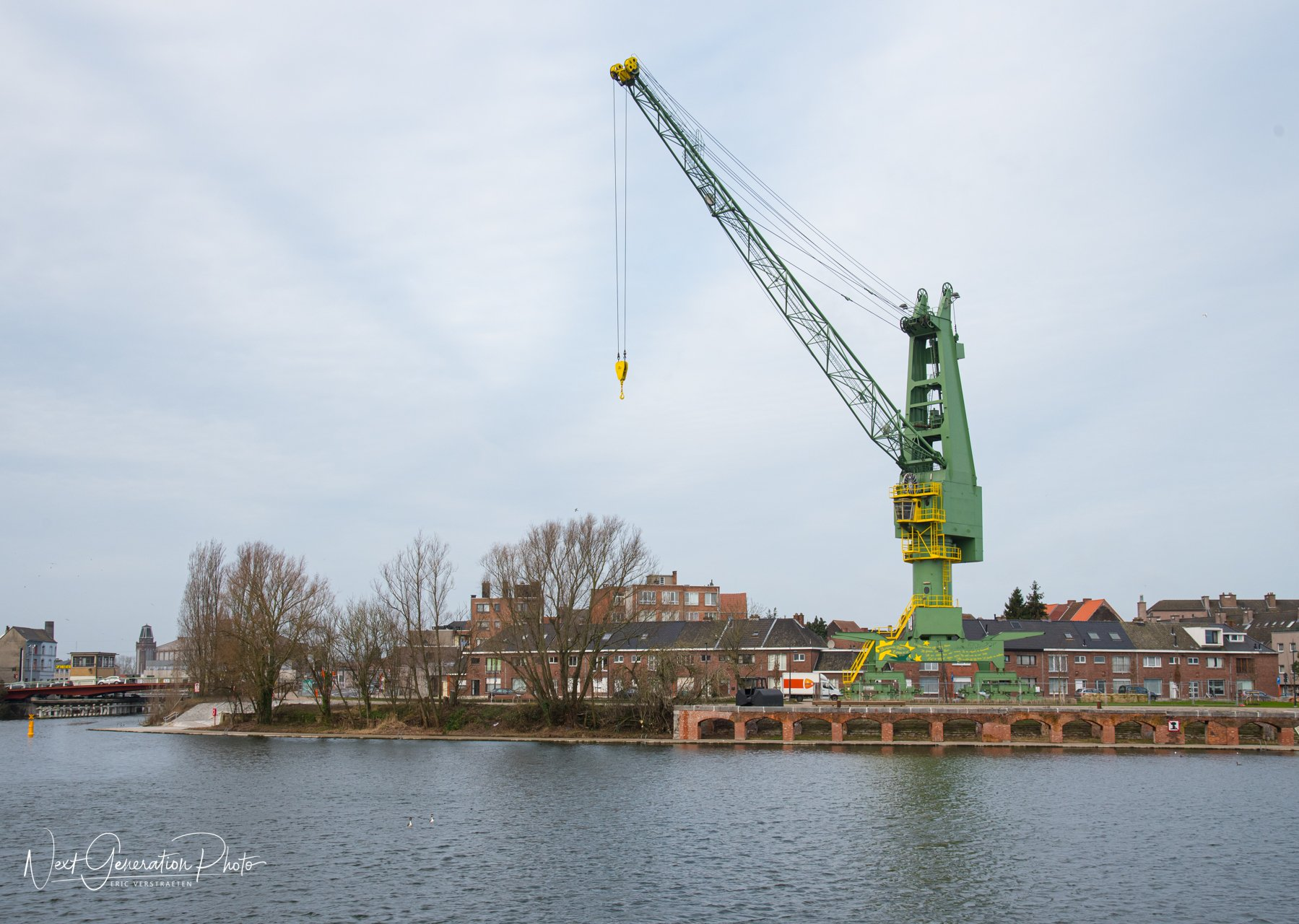 Houtdok in de Gentse haven 2020-02-03-6